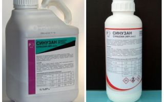 Sinuzan-remedie voor bedwantsen
