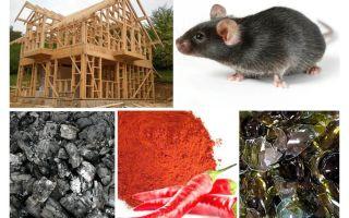 Bescherming van het frame huis tegen muizen