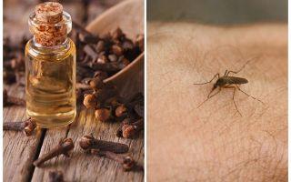 Kruidnagelolie tegen muggen