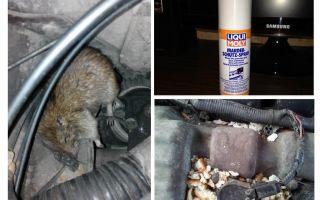 Spray ratten voor de auto
