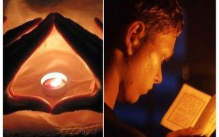 Percelen en gebeden van bedwantsen in het appartement