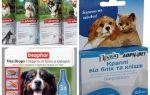 Vlooien- en tekenremedies voor honden