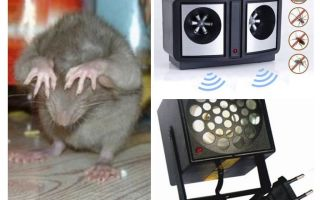 Rodent Ultrasonic Repellers