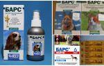 Luipaard tegen teken voor honden en katten