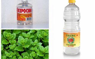 Waar vlooien bang voor zijn: water, bleekmiddel, azijn, kerosine, etc.
