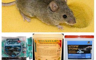 Vergif van muizen