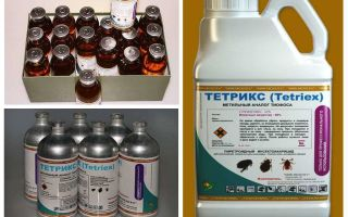 Tetrix-remedie voor bedwantsen