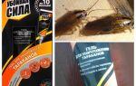 Oplossing Schadelijke kracht van kakkerlakken