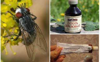Remedie voor horzels en paardenvliegen voor mensen