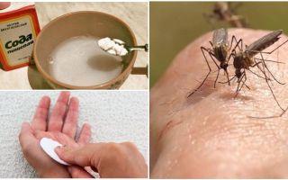 Mosquito bites soda-oplossing voor kinderen en volwassenen