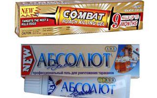 Beste Gels voor bedwantsen: Globaal, Absoluut, Fipronil, enz