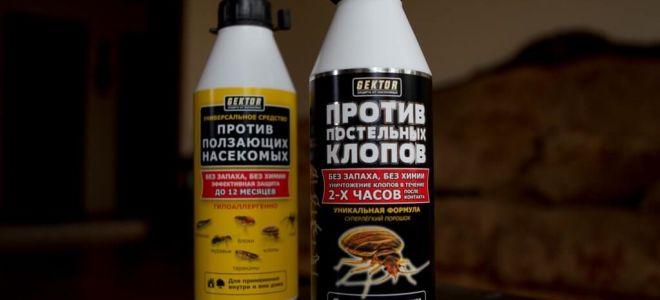 GEKTOR tegen bedwantsen en kruipende insecten