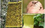 Muggenvallen met hun eigen handen