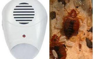 Repeller Pest Repeller van bedwantsen