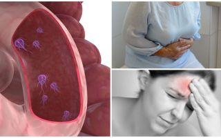 Hoe de aanwezigheid van Giardia in het menselijk lichaam te bepalen