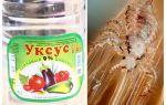 Hoe azijn luizen en neten te verwijderen