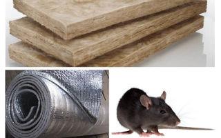 Wat voor soort isolatie eet geen ratten en muizen