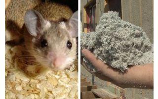 Wat voor soort isolatie eet geen muizen