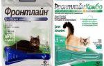 Frontlinie vlooien druppels voor katten