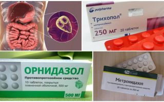De beste geneesmiddelen voor de behandeling van Giardia bij volwassenen