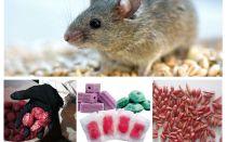 Gif voor ratten en muizen