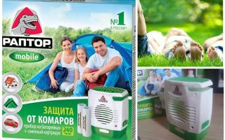 Raptor op muggenbatterijen
