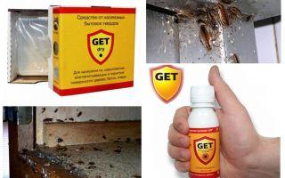 Betekent Geth van kakkerlakken