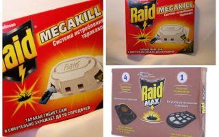 Cockroach Raid: vallen, spray, aerosol