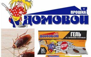 Proshka Brownie-gel van kakkerlakken