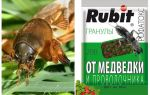 Snijdt Rofatoks-korrels van de beer en de draadworm