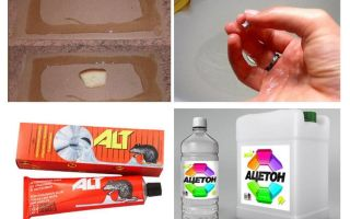 Hoe de lijm van muizen te wassen