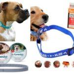 Flea collar voor honden