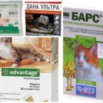 Vlooiendruppels voor katten-1