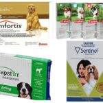 Flea-tabletten voor honden