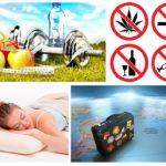 Waarom dromen muggen