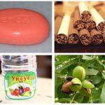 Folkmedicijnen tegen motten