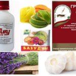 Blackfly-remedies in orchideeën