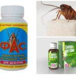 Kakkerlak pillen