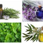 Essentiële oliën van vlooien