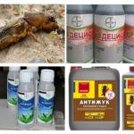 Insectendodende producten van Medvedka
