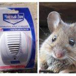 Ultrasone repeller van ratten en muizen Schoon huis