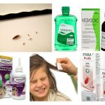 Lice Remedies