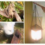 Hoe zich te ontdoen van vleermuizen in het huis
