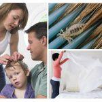 Bescherming tegen pediculosis