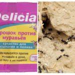 Ants Delicia Powder