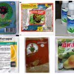 Effectieve geneesmiddelen voor bladluizen