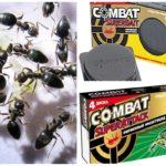 Insectenval gevecht