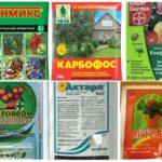 Effectieve giftige chemicaliën van bladluizen
