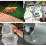 Zelfgemaakte mugvallen