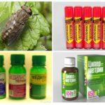 Insecticidenproducten